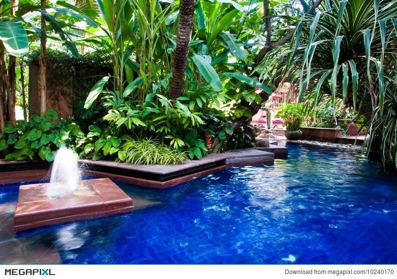 Tropical Swimming Pool Stock Photo 10240170 - Megapixl