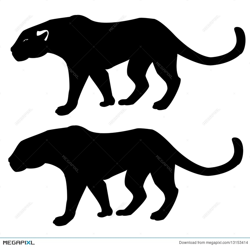 panther silhouette illustration 13153414 megapixl