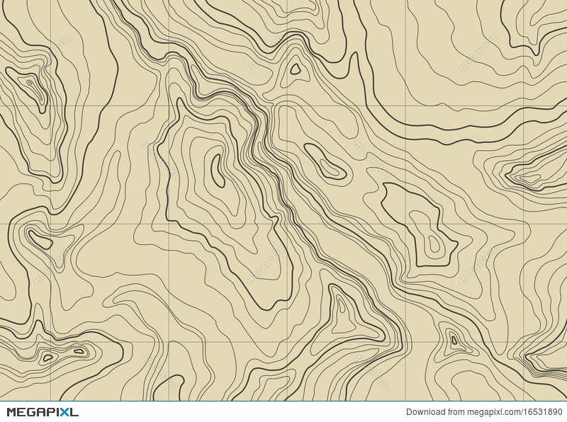 Topographic Map Vector Free.Abstract Topographic Map Vector Illustration 16531890 Megapixl