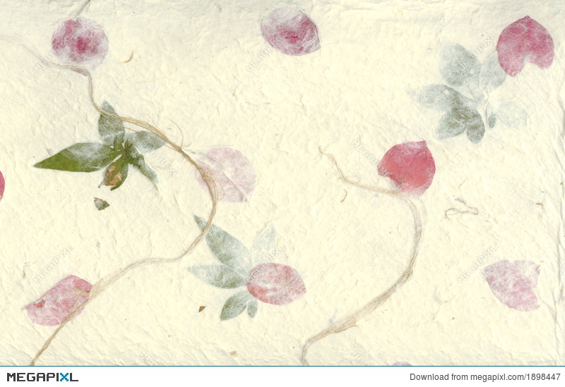Pressed flower paper background stock photo 1898447 megapixl pressed flower paper background mightylinksfo