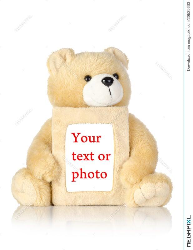 Teddy Bear With Photo Frame Stock Photo 20528683 - Megapixl