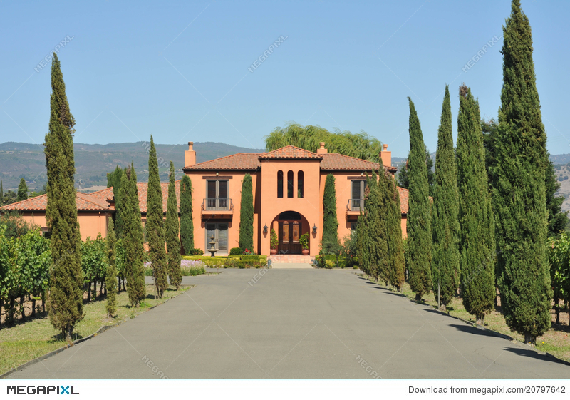mansion at end of long driveway with trees stock photo 20797642