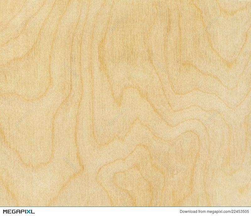 birch wood texture stock photo 22453505 megapixl
