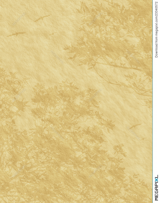 Elegant Old Paper Background Texture Stock Photo 23340572 Megapixl