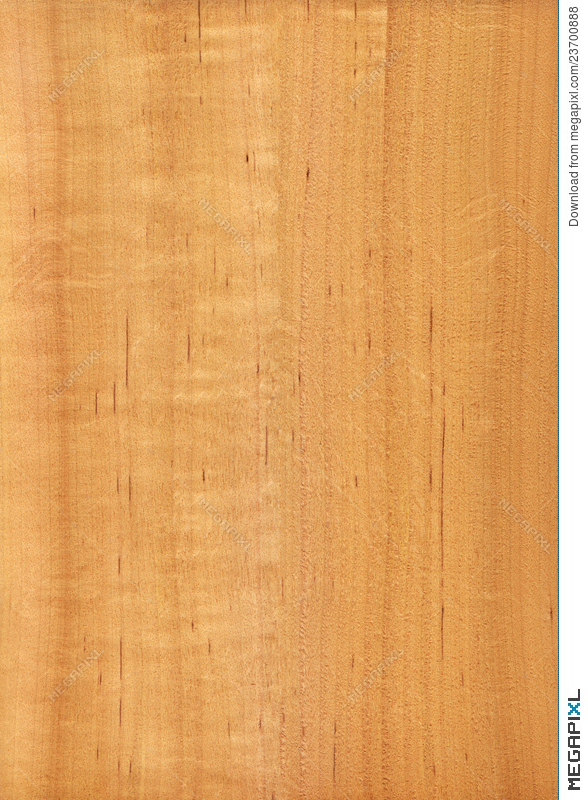 Alder Wood Texture Stock Photo 23700888 Megapixl