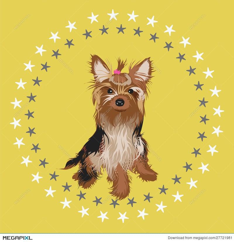 Yorkshire Terrier Illustration Illustration 27721981 Megapixl