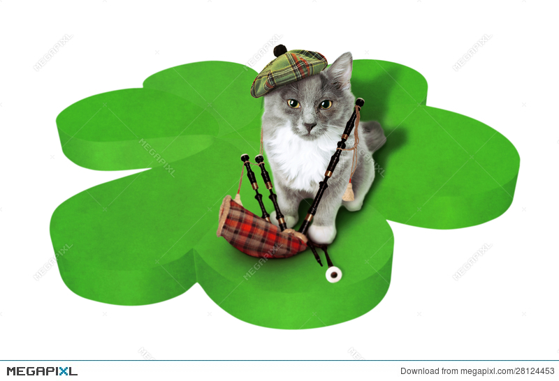 Cat With National Symbols Of Scotland Stock Photo 28124453 Megapixl