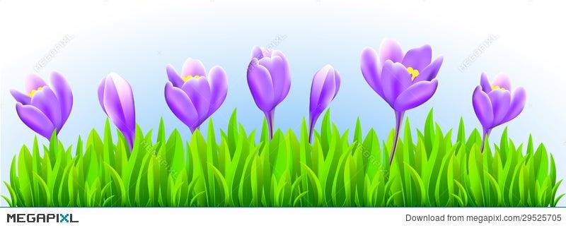 Fresh Spring Flower Border Illustration 29525705 Megapixl