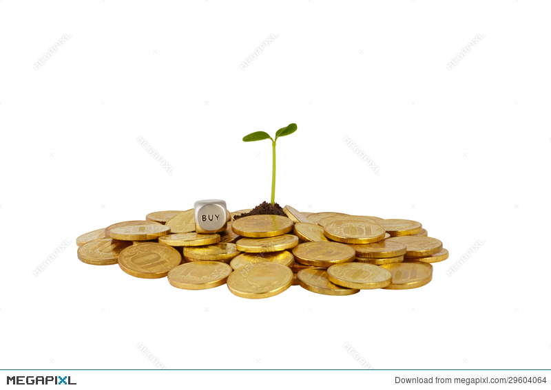 A Studio Shot Of A Bunch Of Coins With A Small Plant Stalk Coming