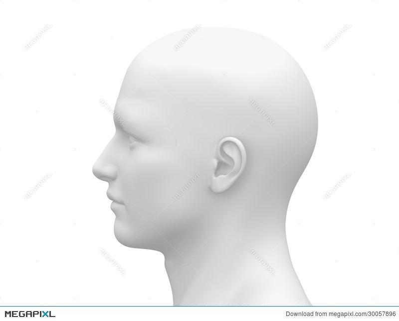 blank white male head side view illustration 30057896 megapixl