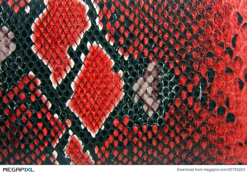 Geometric Snake Skin Pattern Texture Black Background - Download Free  Vectors, Clipart Graphics & Vector Art