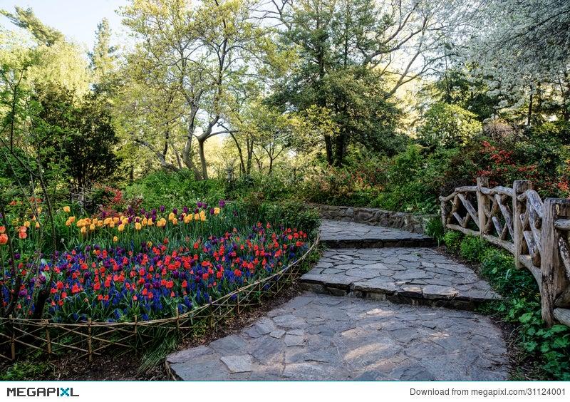 Central Park, New York City Shakespeare Garden Stock Photo 31124001 ...