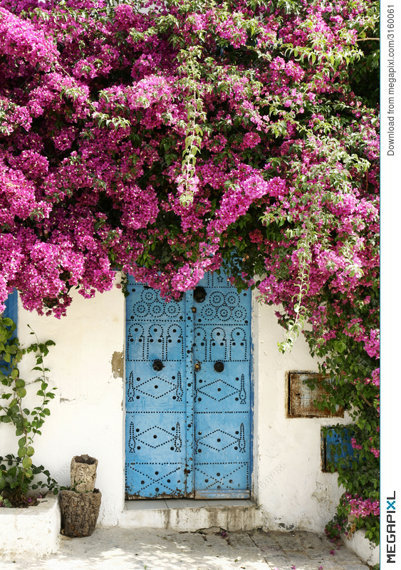 Door and flowers & Door And Flowers Stock Photo 3160061 - Megapixl