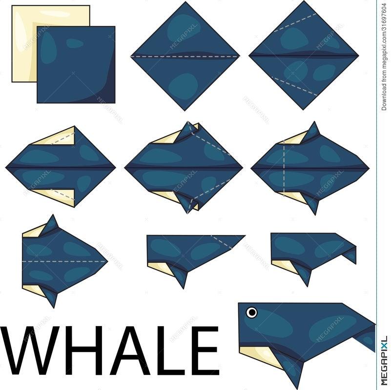 Origami Whale - Paper Folding / Papier Falten / 종이접기 - Paper ...   800x801