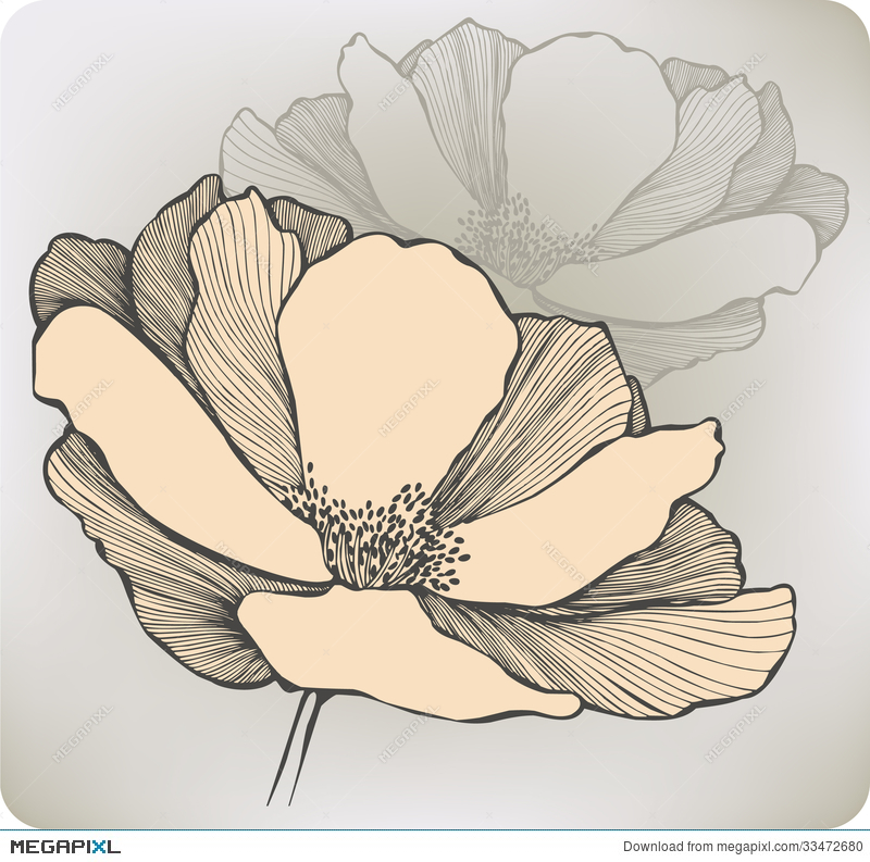 Abstract Flower Hand Drawing Vector Illustration