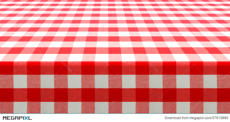 Table Perspective View With Red Checked Picnic Tablecloth