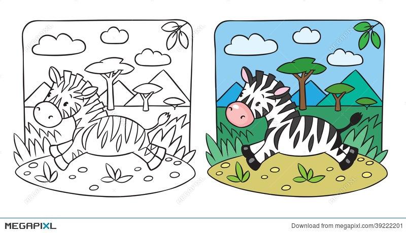 Little Zebra Coloring Book Illustration 39222201 - Megapixl
