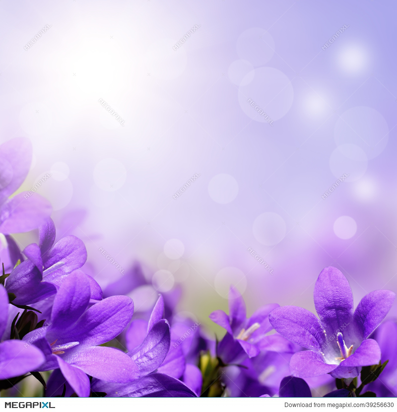 Abstract spring background with purple flowers stock photo 39256630 abstract spring background with purple flowers mightylinksfo Images