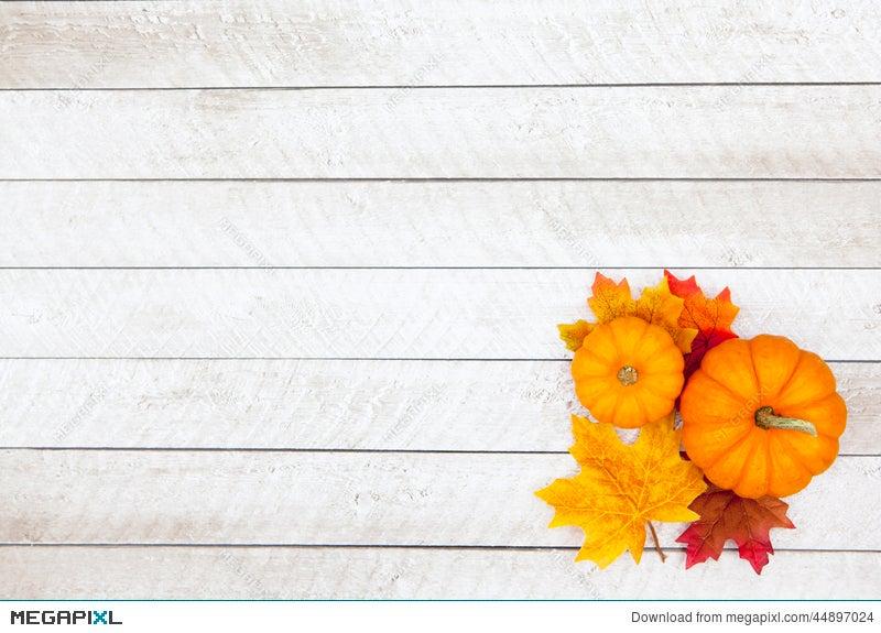 autumn pumpkin thanksgiving background stock photo 44897024 megapixl