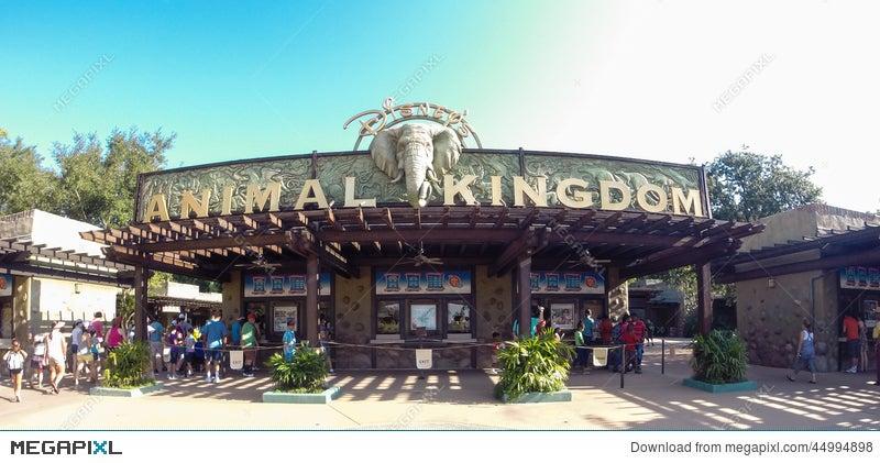 entrance to animal kingdom at walt disney world stock photo 44994898