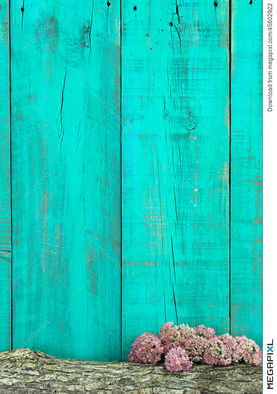 Log and pink flowers border antique teal blue wooden fence stock log and pink flowers border antique teal blue wooden fence mightylinksfo