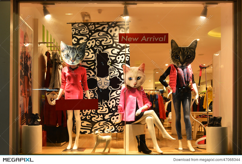 cf18578adfe80 Fashion Boutique Display Window With Mannequins