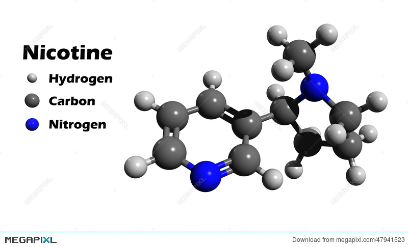 Nicotine 3D Structure Illustration 47941523 - Megapixl
