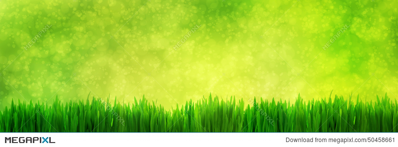 Fresh Green Grass Panorama On Natural Blur Nature Background Stock Photo 50458661 Megapixl