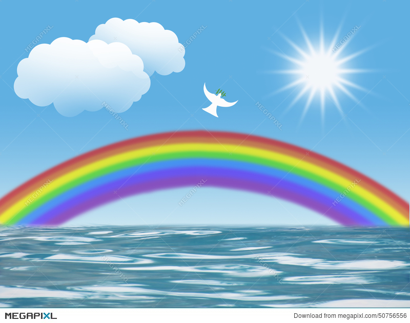 White Dove Flying To Sun With Olive Leaf Rainbow Clouds Christian
