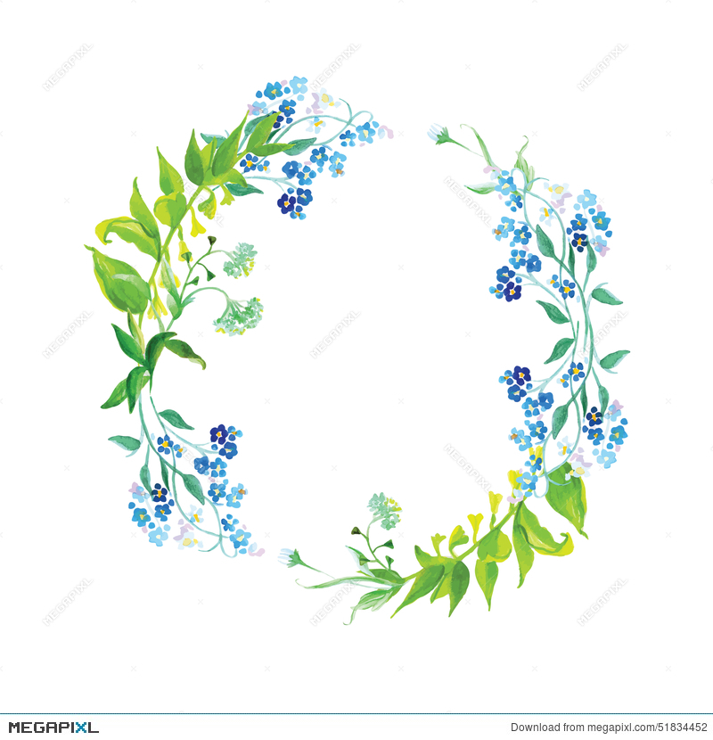 Forget-Me-Not And Herb Watercolor Round Vector Frame Illustration ...