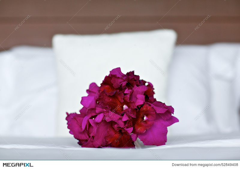 Purple Orchid Wedding Bouquet On Bed Stock Photo 52849408 - Megapixl