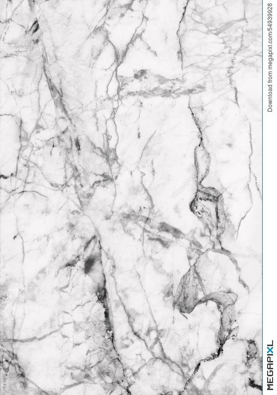 Emser 5 Pack Black and White Marble Floor and Wall Tile Common 12 Source  White  Marble Patterned Texture Background Marbles Of Thailand
