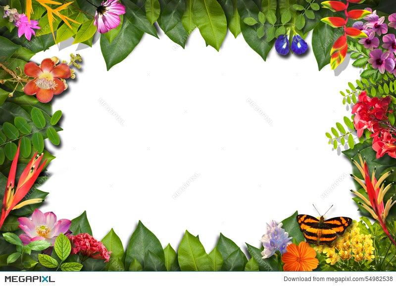 nature border design clipart www pixshark com images clip art for graduation cap clip art for graduates