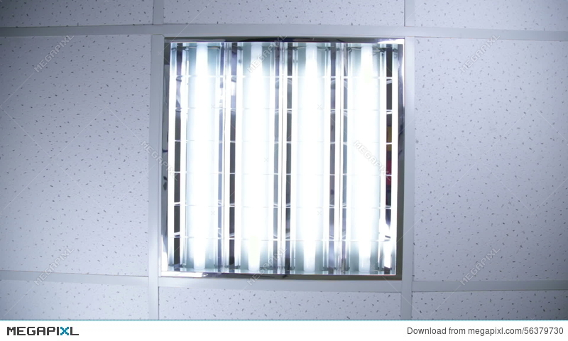 Fluorescent lights in office ceiling video footage 56379730 megapixl aloadofball Image collections