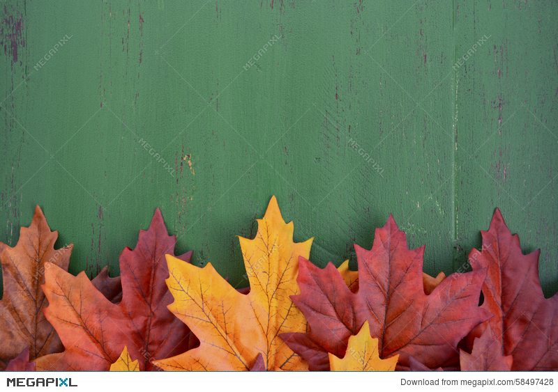 Autumn Fall Rustic Wood Background