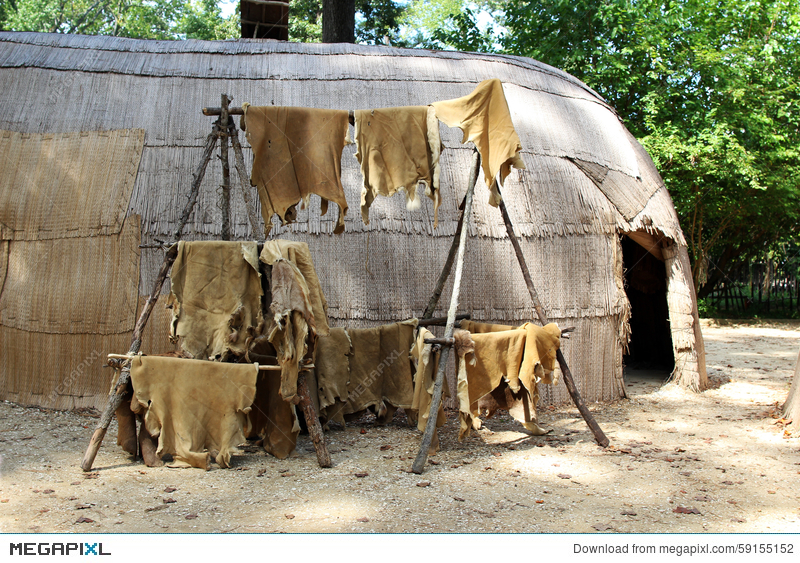 Animal Skins Drying At A Native American House Stock Photo 59155152
