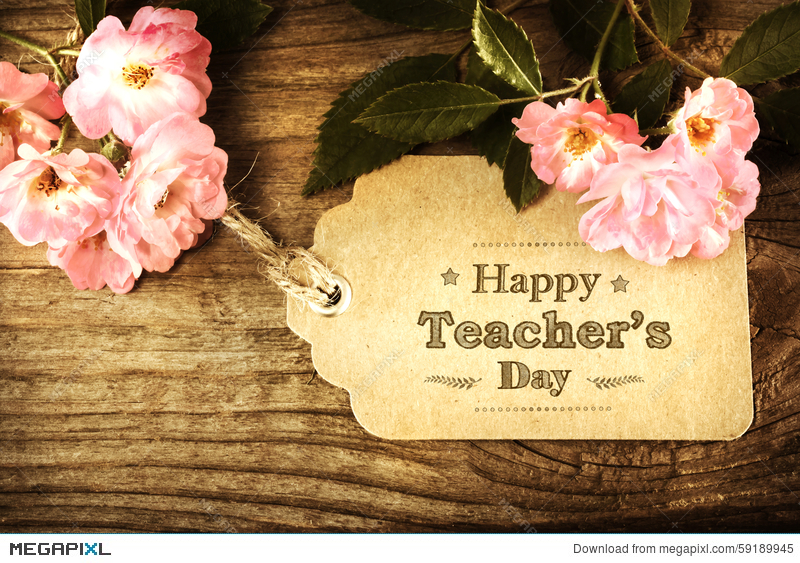Happy teachers day message with pink roses stock photo 59189945 happy teachers day message with small pink roses on rustic wooden table thecheapjerseys Choice Image