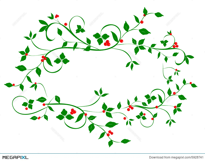 Christmas Vines.Christmas Holly Berries On Vines Illustration 5928741 Megapixl