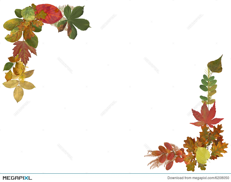 autumn leaves border illustration 6208050 megapixl