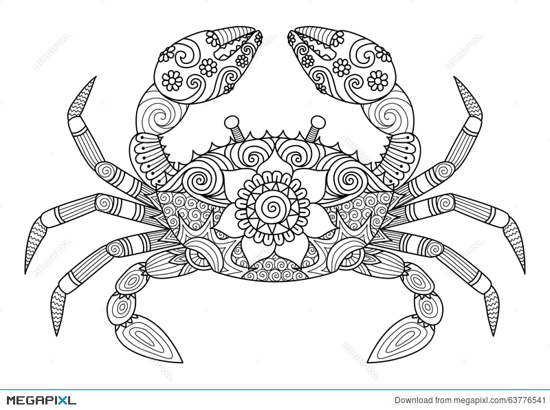 29bbb2f649a2b Hand Drawn Crab Zentangle Style For Coloring Book For Adult ...