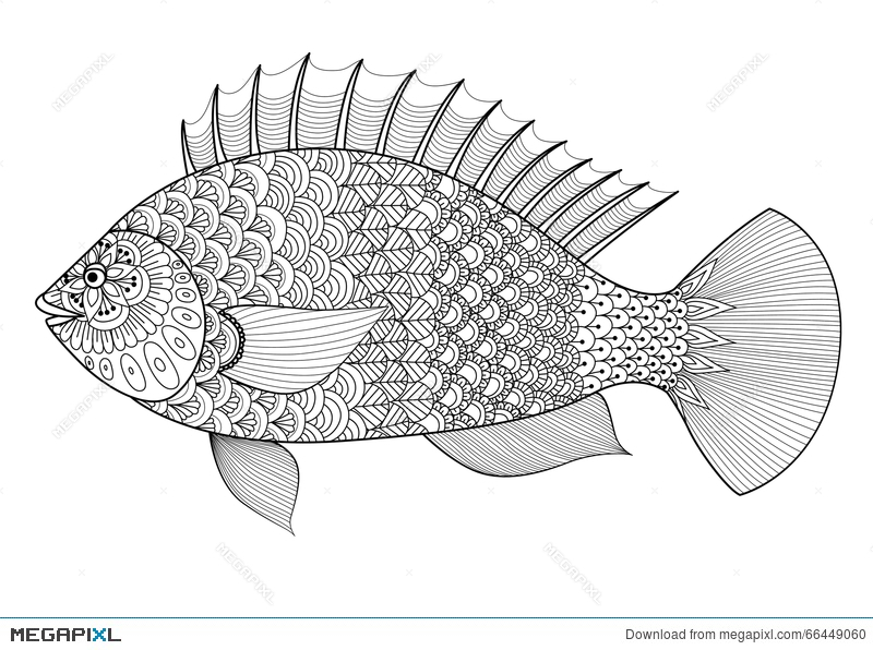 Fish Line Art Zentangle Style For Coloring Book Adulttattoologo T