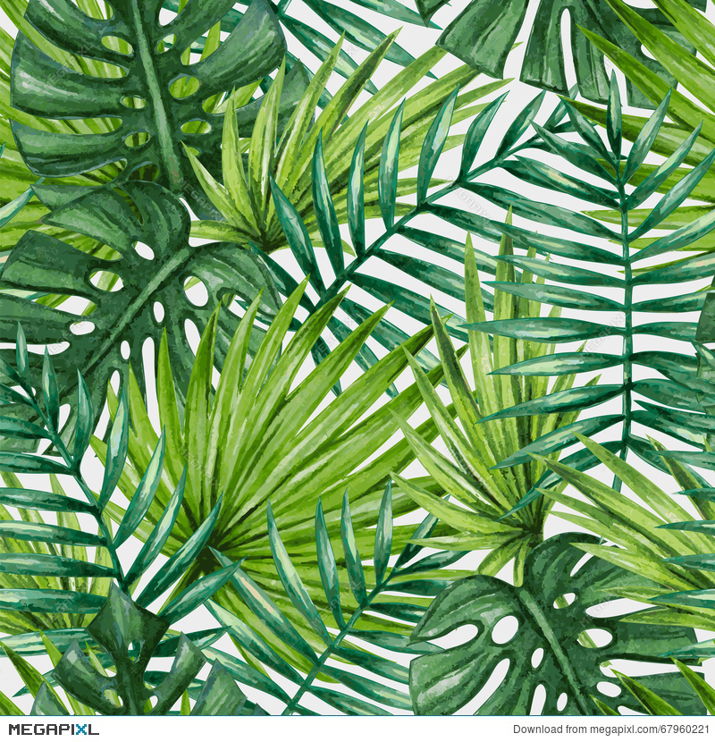 Watercolor Tropical Palm Leaves Seamless Pattern Illustration 67960221 Megapixl The set of high quality hand painted watercolor tropical leaves and elements images in bright and fresh color palette. watercolor tropical palm leaves