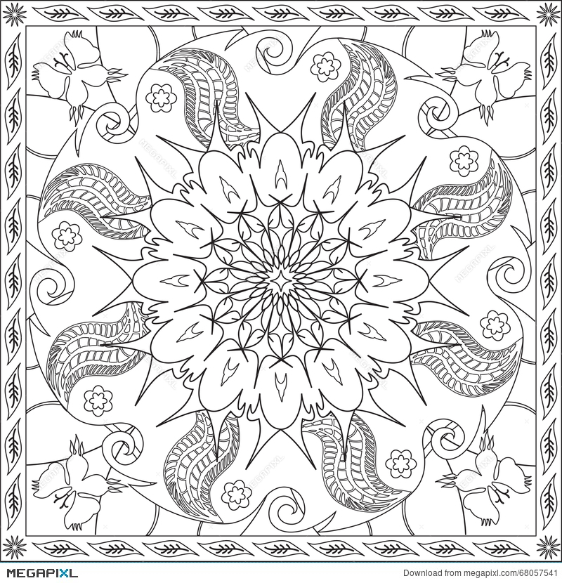Coloring Page Book For Adults Square Format Floral Mandala Butterfly Design Vector Illustration