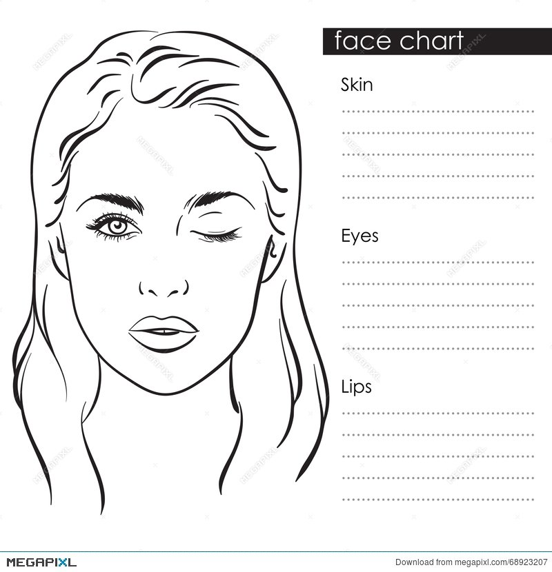 Beautiful woman portrait face chart makeup artist blank template face chart makeup artist blank template vector illustration maxwellsz
