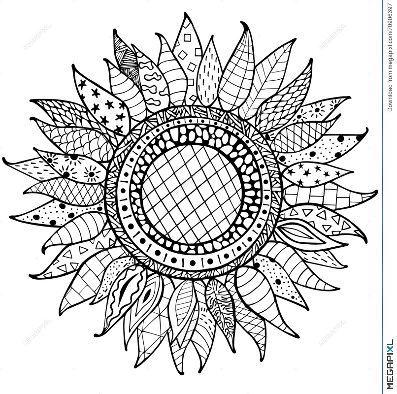 Coloring Pictures Of Sunflowers. Hand drawn zentangle sunflowers ornament for coloring book Drawn Zentangle Sunflowers Ornament For Coloring Book