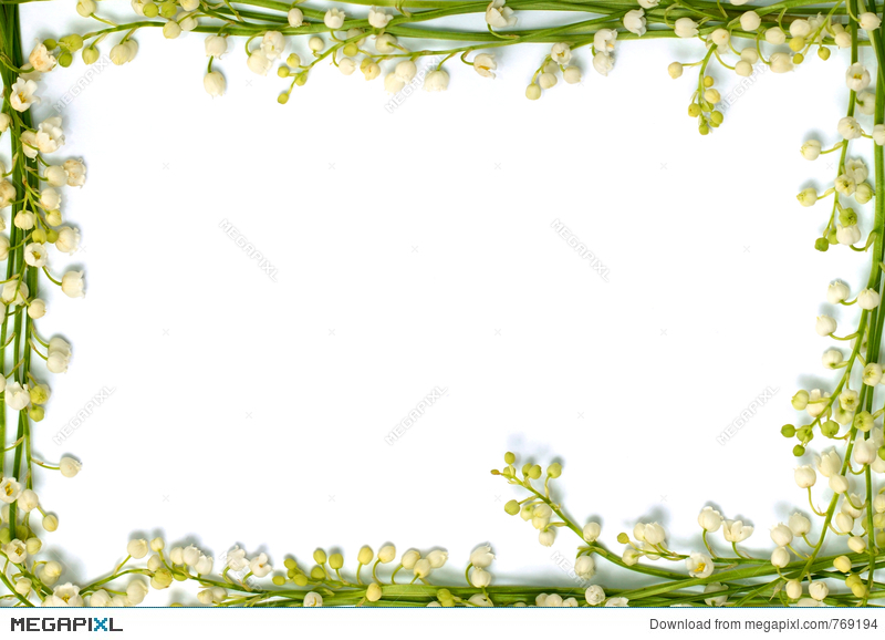 Lily Of The Valley Flowers On Paper Frame Border Isolated Horizo ...
