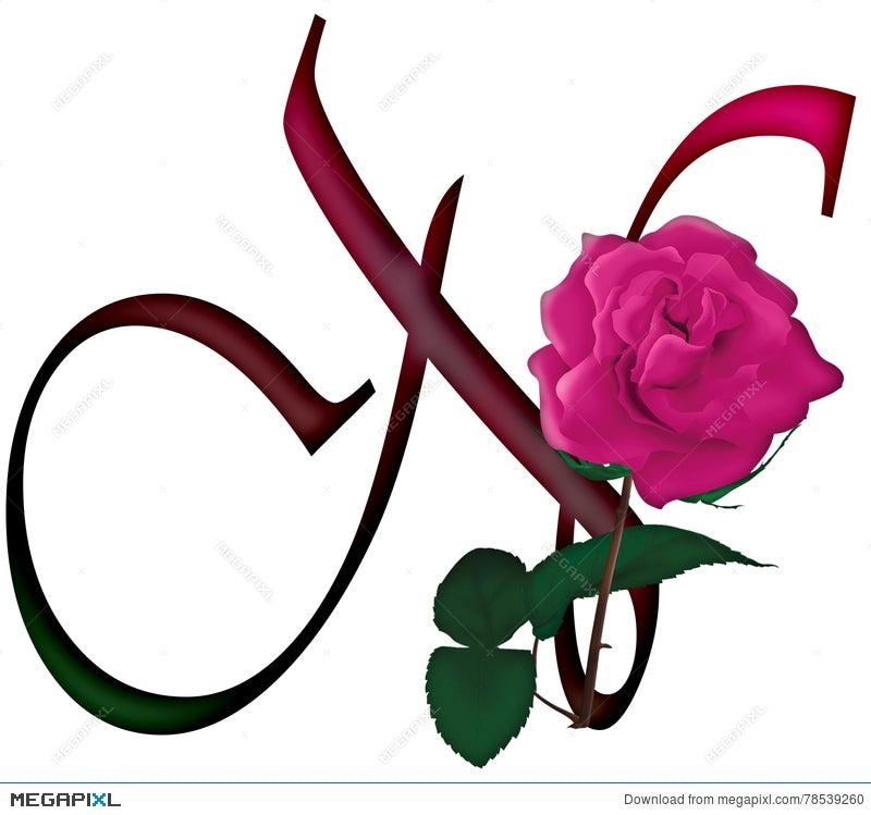 Letter N Floral Font Illustration 78539260 Megapixl
