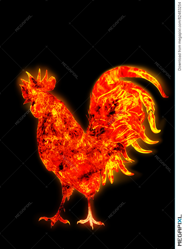 Colorful Fire Rooster Symbol Of The Chinese New Year Fire Bird