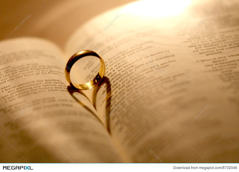a wedding ring in the bible stock photo 8732046 megapixl