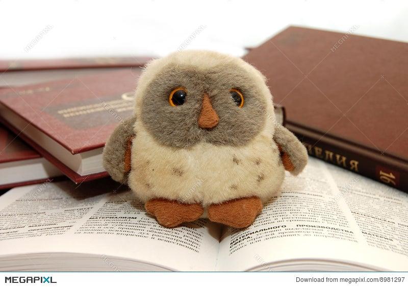 Owl A Symbol Of Wisdom And Knowledge Stock Photo 8981297 Megapixl